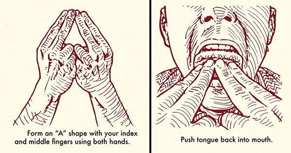 The Ultimate Guide for Learning How to Whistle